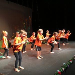 Broadway Stars Performance (2)